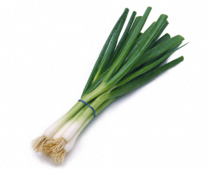 green-onion-bunch